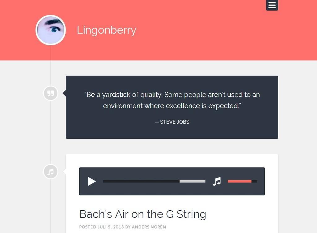 【博客主题】wordpress单栏博客高级主题Lingonberry