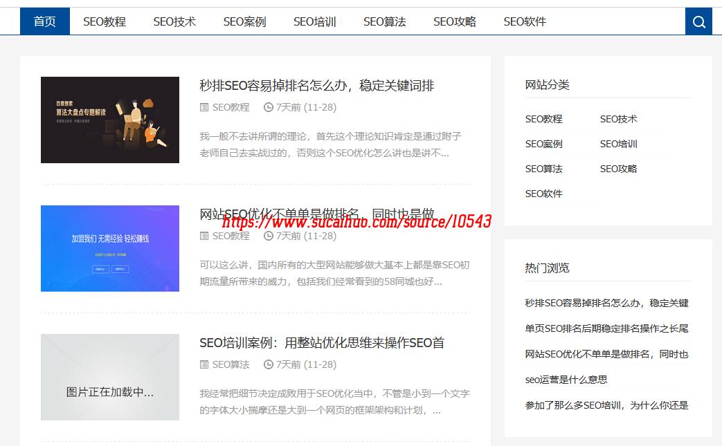 SEO优化技术教程网站源码 自适应手机端