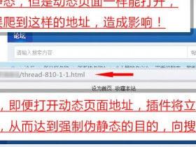 Discuz强制伪静态地址seoV5.3插件