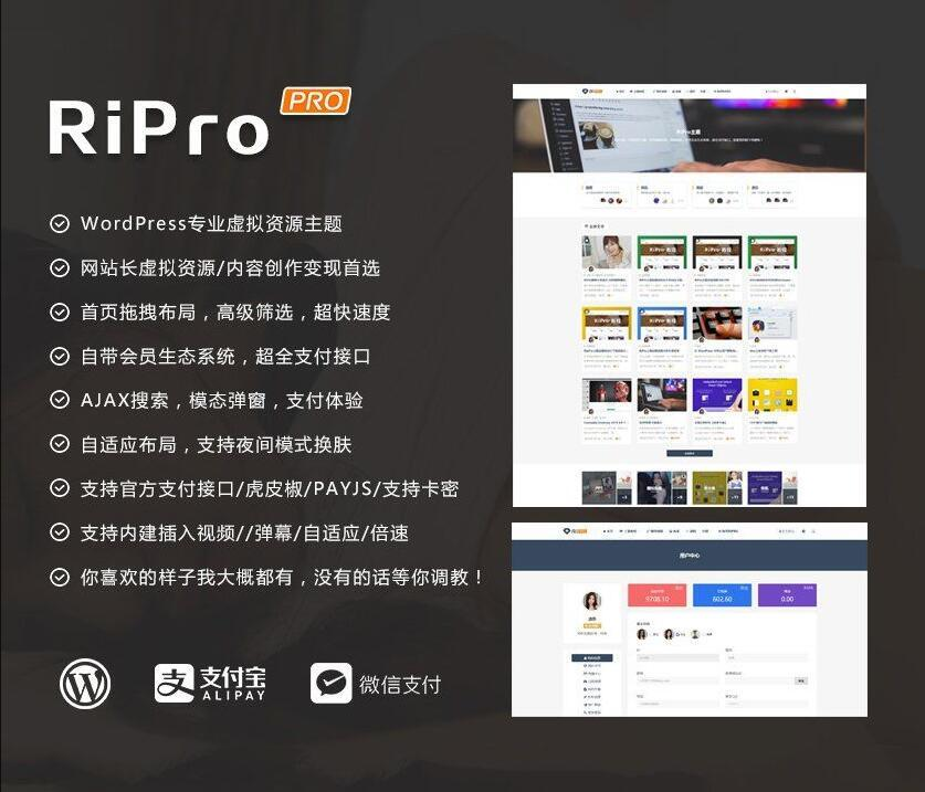 Ripro7.0日主题破解版解密源码无限制版去授权 资源类博客RiPro主题