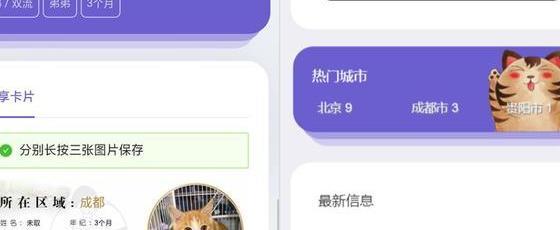 最新流浪猫流浪狗H5完整版程序源码 可封装APP